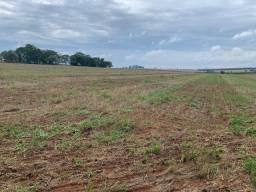 Avare-Sp, Fazenda 30 Alqueires, Terra Vermelha