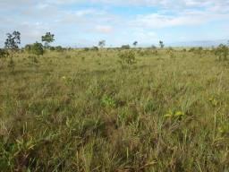 315 hectares, no Massaranduba 1 a 55 km da capital