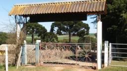 Chácara à venda na região do Rodeio em Balsa Nova/PR