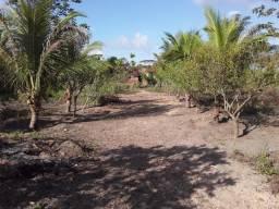 Terreno com meio hectare em Pitanga - Aldeia/Abreu e Lima