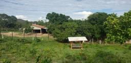 Fazenda em Niquelândia Goiás