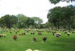 Jazigo Terreno Cemitério Parque Iguaçu Barigui em Curitiba