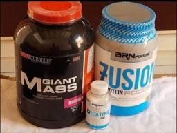 proteína e hipercalóric.