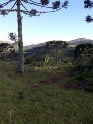 Título do anúncio: Urubici - Chácara - Rio Crioulas