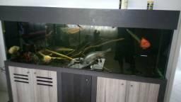 Aquario 600lts