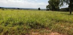 Fazenda 1350 ha