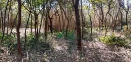 Chácara à venda, 1000 m² por R$ 75.000,00 - Jardim Getsemani - Santa Luzia/MG