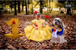 Vestido bela e roupa cachorro a fera