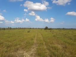 200 Hectares, para plantio a 120 km de Macapá rodovia AP-070