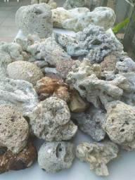 Pedra Coral Para Aquário | 12,00R$ o Kg