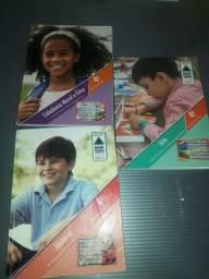 Livros escolar sucesso 4 Ano.
