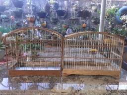 2 gaiolas simples