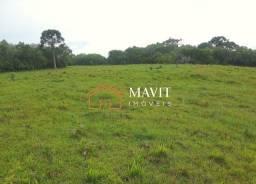 Título do anúncio: Terreno Rural 242.000m² em Campo Belo do Sul SC