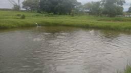 Sítio no município de Santa Cruz de Goiás, Próximo de Cristinópolis, 121 km de Goiânia