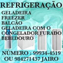 Assistência técnica geladeira freezer balcão Bebedouro
