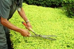 Jardineiro,roçador..