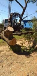 Título do anúncio: Filadélfia côrte e poda de árvores, serviço com total excelência