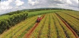 Investimento Rural