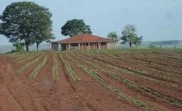 Título do anúncio: Fazenda