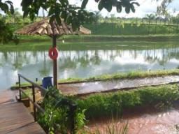 Chácara em Goiânia, Chácara perto de Goiânia,
