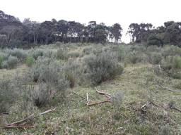 Fazenda em Urubici/chácaras