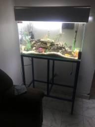 Vendo esse aquário