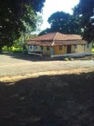 Fazenda em Lavras MG com plantação de café 100 hectares 130.000 pés de café