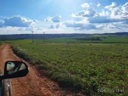 Título do anúncio: Fazenda Lavoura | 37.5 Alqueires | Aptidão 70% Lavoura