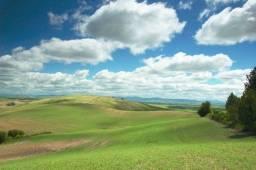 Título do anúncio: vende-se uma área de terra com 5.2 hectares fon-87- *1