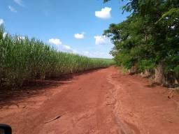 Vendo ótima fazenda na região de Ourinhos-SP