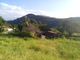 Fazenda 944 hectares, Formosa-GO