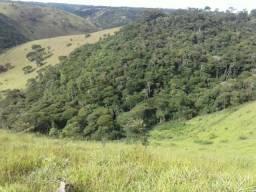 Belíssima fazenda com excelente estrutura (Barra do Choça-BA)