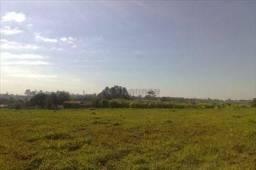 Terreno Industrial à venda, Canguiri, Itu - TE1535.