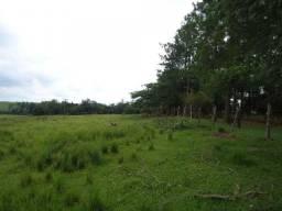 Terreno à venda, 62070 m² por R$ 100,00 - Campo Largo - Porto Feliz/SP