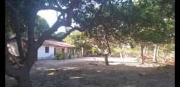 Fazenda em Paraipaba no Distrito de Boa Vista. 65 Hectares