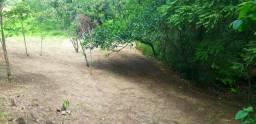 Sitio Bosque