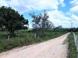 Fazenda de 176 Tarefas em Lagarto