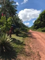 Vendo de 100 hectares em Benevides R$ 850.000,00