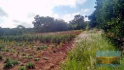 Sitio de 2 hectares valor 1.500.000