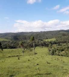 Fazenda em Dr Pedrinho