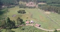 Terreno rural em São Cristóvão do Sul - sc