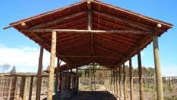madeira de eucalipto para curral
