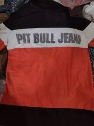 Vendo camisa da Pitbull original 150.novo