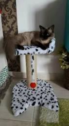 Arranhador de caminha para gato