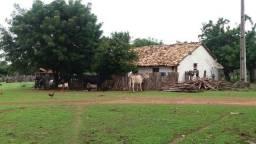 Fazenda - Batalha - PI (654 ha)