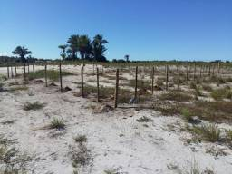 Terreno campinhos península de marau barra grande