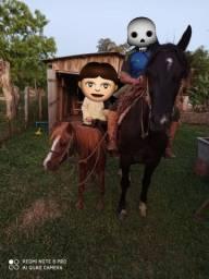 Vendo mini ponei