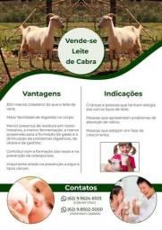 Vende leite de cabra e vaca