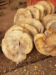 Bolacha madeira