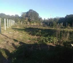 Terrenos 10x35 bairro Lageado